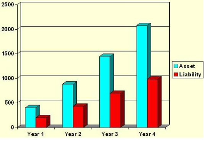 Cumulative Community Assets and Liabilities Through 4 Years